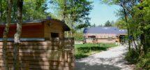 HVL Entree cabane net (Copier)